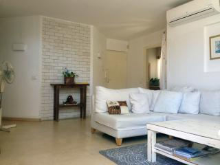 Beautiful Duplex in Gordon street with sea view - Tel Aviv vacation rentals