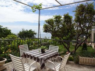 Room  near Dubrovnik - Dubrovnik vacation rentals