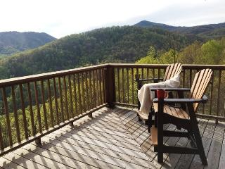 Mtn Cabin, Spectacular Views, Hot Tub, Sleeps 10 - Bat Cave vacation rentals