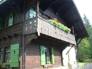Apartment Chalet Kladská - Marianske Lazne vacation rentals