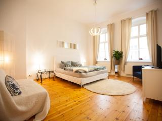 Dream luxury Apartment in Mitte for IFA !!! - Berlin vacation rentals