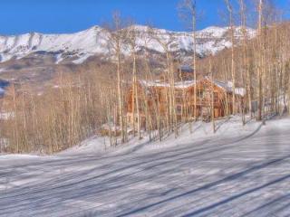 Walker Residence - Mountain Village - Mountain Village vacation rentals