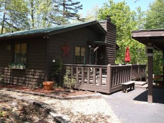 Cozy Cabin with guest house - Smoky Mountains vacation rentals