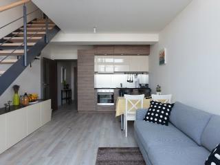 City Center New Apartment - Prague vacation rentals