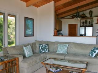 Cozy Large 1bdrm 1bath aprt With Sweeping Views - Kailua vacation rentals