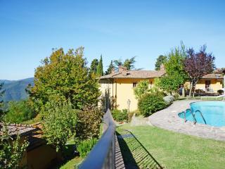 Villa il Palagio - Dicomano vacation rentals