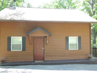 Family Matters Cabin near Pigeon Forge sleeps 6 - Pigeon Forge vacation rentals