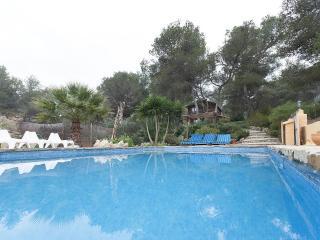 LLIMO VUIT - 0668 - Carcaixent vacation rentals