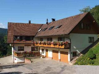 Vacation Apartment in Bad Peterstal-Griesbach -  (# 8484) - Bad Peterstal-Griesbach vacation rentals