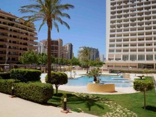 Apartamento Apolo XVI 2 6 27 - Calpe vacation rentals