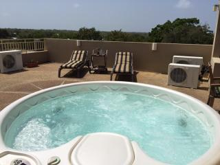 Luxurious Penthouse Apartment - Cabo Rojo vacation rentals