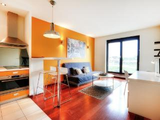 Angel City 83 Apartment - Southern Poland vacation rentals