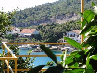 Dugi Otok sea view apartments - Sali vacation rentals