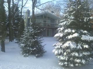 Poconos Towamensing Wylie (PTW) - Albrightsville vacation rentals