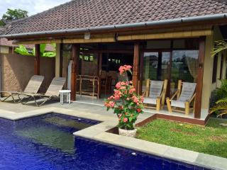 Hibiscus Cottage pool, peace & views in Penestanan - Ubud vacation rentals