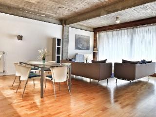 Loft X - Brussels vacation rentals
