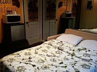 Cozy Guest Room in Fabulous Virginia Highland - Atlanta vacation rentals