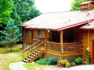 Big Bear Retreat - Nature Surrounds This Centrally Located Log Cabin with Large Yard and Picnic Table, Screened Porch, View, Wi- - Bryson City vacation rentals
