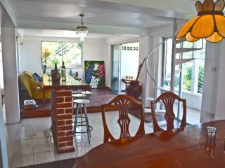 SPACIOUS  HILLSIDE VILLA! SPACIEUSE VILLA HILLSIDE - Roseau vacation rentals