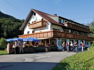 Vacation Apartment in Bad Peterstal-Griesbach -  (# 8464) - Rheinau vacation rentals