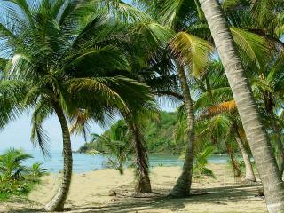 Wonderful Four Bedroom Villa on Private Caribbean - Punta Santiago vacation rentals