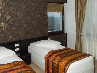 Pensiunea Casa de la Varatec - Agapia vacation rentals