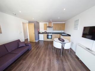 Tranquility, Carn Brea - Tranquility, Carn Brea located in Newquay, Cornwall - Newquay vacation rentals