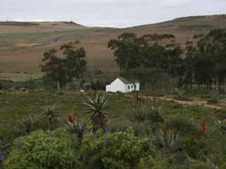 Infinity Farm - Riversdale vacation rentals