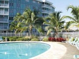 Relaxing 1/1 Private Condo, 4 mi. to Gulf beaches - Saint Petersburg vacation rentals
