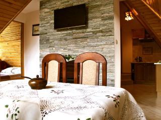 Apartment Kościeliska - Zakopane vacation rentals