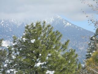 Relaxing comfort in Flagstaff - Northern Arizona and Canyon Country vacation rentals