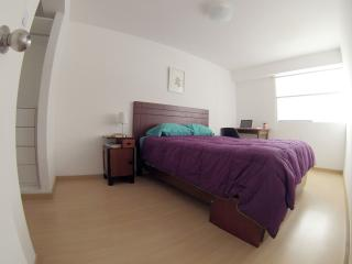 LIMA Luxury Double Room Miraflores BEST LOCATION - Lima vacation rentals