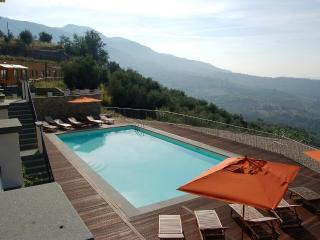 AI FIORI apt up to 5 people with pool, sauna & gym - Lucca vacation rentals