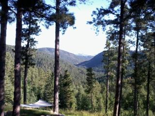 Madsen ' s Mountain - Black Hills and Badlands vacation rentals
