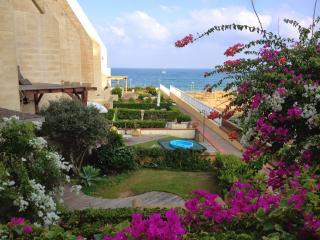Sea & Sun Complex Tel Aviv 100 meters walking distance from the sea - Tel Aviv vacation rentals