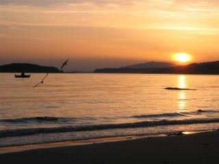 Footprints beach Cottage - Sunshine Coast vacation rentals