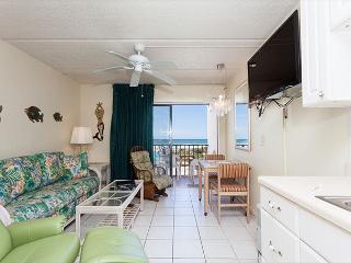 Beachers Lodge 206, Beach Front, Queen Sized Suite, Pet Friendly - Saint Augustine vacation rentals