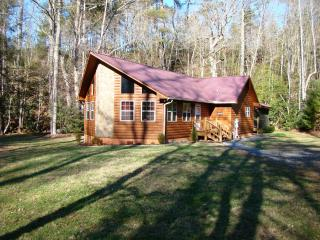 Bear Creek Cove - Hayesville vacation rentals