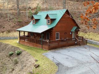 Laurel Ridge Cabin - Whittier vacation rentals