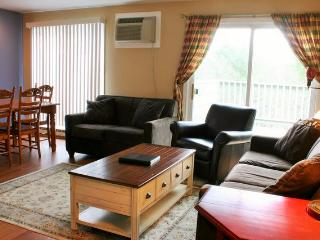 Mountainside Resort A-302 - Stowe vacation rentals