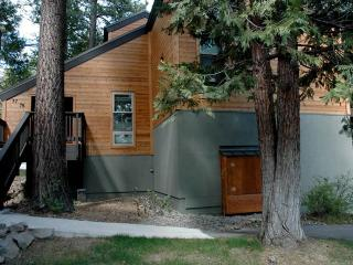 Villas # 78 - Tahoe City vacation rentals