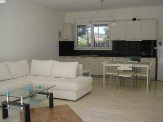 Stylish house 50 meters from the sea - Hanioti vacation rentals