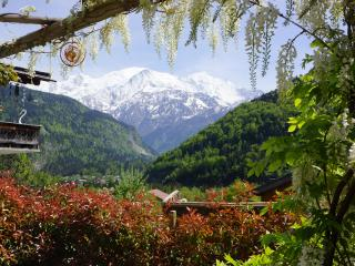 Picturesque & Peaceful Retreat in Chamonix Valley - Chamonix vacation rentals