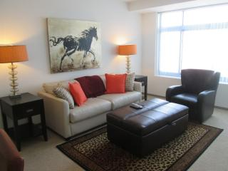 Lux 2BR Cambridge Apt by MIT - Greater Boston vacation rentals