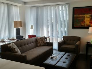 Lux Kendall Square 2BR w/gym, WiFi - Greater Boston vacation rentals