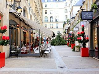 PARIS'S BEST~MAGNIFICENT 4 BR APT~CHAMPS ELYSEES - Paris vacation rentals