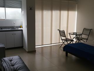 APARTAESTUDIOS AMOBLADOS POR DÍAS EN PEREIRA - Pereira vacation rentals