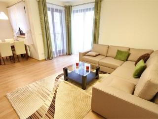 Makao Apartment - Warsaw vacation rentals