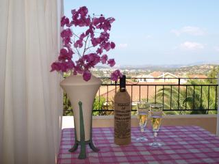 Aristotelis apartments Kefalonia - Cephalonia vacation rentals