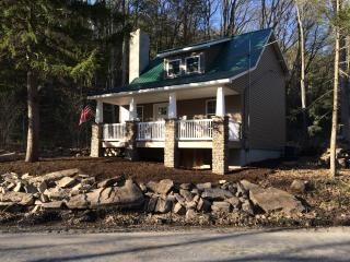 Bear Den Cottage along Penns Creek newly renovated - Lewisburg vacation rentals